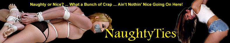 NaughtyTies_800_Wide_logo